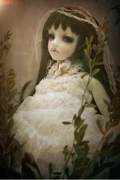 PhotoFunia-4843c0d_o