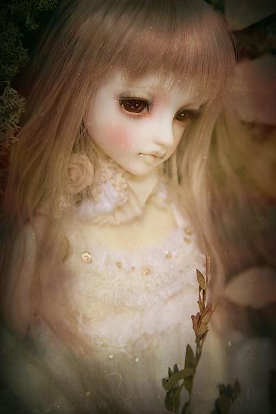 PhotoFunia-48449b9_o