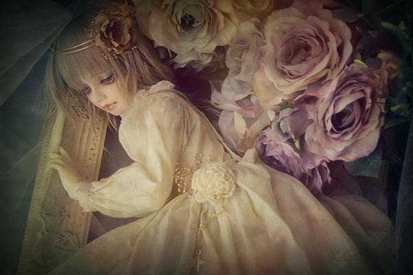 PhotoFunia-56bdb11_o